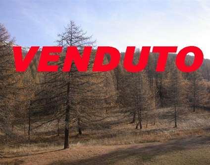 Appartamento Vendita Sansicario Frazione San Sicario Alto, Residence R/21 san sicario Alto